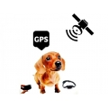 GPS Positioner Real Time карта
