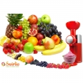 Swirlio плодова десертна машина